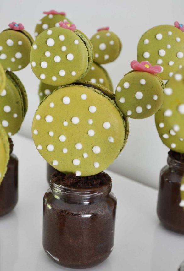 Macarons cactus - Sofia Beau